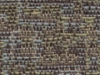041 Lichen